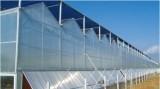 Venlo Type Greenhouse
