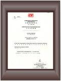 Wello′s License