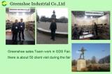 Greenshoe Sales Team Work in Gds