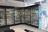 artificial skeleton model exhibition room