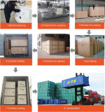 Saibainuo Company--------Pack the machine, Shipment