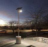 solar fly hawk light project