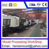 Mould Processing Workshop