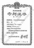 Patent for vortex flow meter