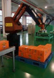 palletizing robot test before shipment
