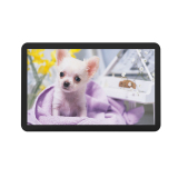 21.5 Inch Open Frame Touch Screen Monitor