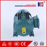Electric Single Phase AC Electromotor with High Voltage