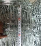 Hot Dipped Galvanized Hinge Joint Field Fence/Farm Fence