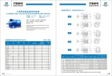 YL Series Double-Capacitor Single Phase motor