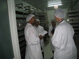 black garlic factory