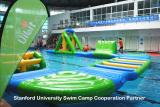 2015 Stanford University Swim Camp Cooperation Partner