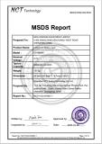 a report for New Wisdom Ltd mining lamp