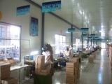 Ampoule Workshop