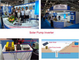 Renewable Energy EXPO 2013 In New Delhi