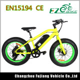 2017 26 Inch Fat Tire Electric Bike with Bafang Motor Spare Parts