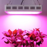 High power led grow light for plant cultivations