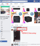 Skytone VERA12 line array speaker good feedback