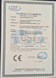 CE Certificate of Earphone