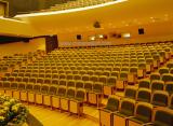 Auditorium Chair Project Sample Item 1111