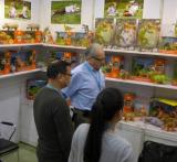 Exhibition Trade Show