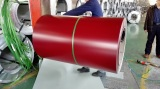 Color Coated Galvanized Steel Coil for Roofing Sheet