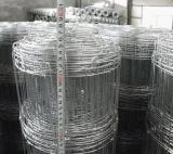 Hinge Joint Galvanized Field Fencing/Woven Wire Fence