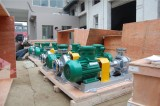 Pumps for Export