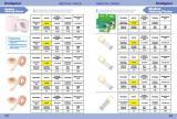 39-40 Medical plaster e-catalogue