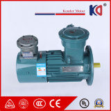 Frequency Conversion AC Electric Motor with Speed Regulating