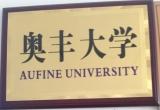 Aufine University
