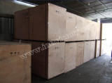 Wood Case Packing Strong Protected Generator