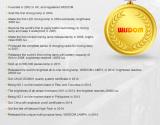 The development process of New Wisdom Ltd