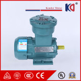 380V 50Hz Induction Embr AC Motor for Textile Machinery