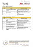 SGS Report -6