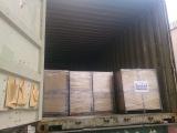 Container Export Australia