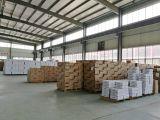 Star Lighting warehouse