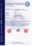 CE Certificate Hoist