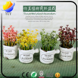 Emulational plant for promotional gifts.