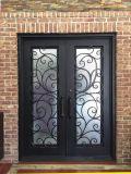 elegant iron entry door