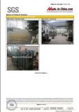 SGS Report9
