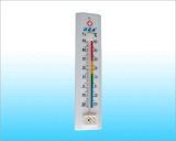 Plastic Thermometers (PS004)