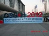 6th., COS+H Exhibition, 2012