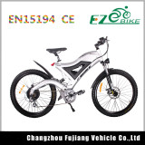 Beautifully Designed Lightweight Electric Bike with 36V Samsung Battery