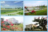 Garden Look Factory Site