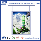Hanging Double Side LED light box
