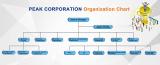 PEAK CORPORATION Organization Chart