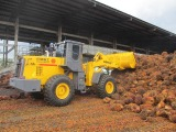 wheel loader 5ton working in palm oil factory located in Thailand