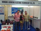 Latin Auto Parts Expo for Ningbo Lusheng Company