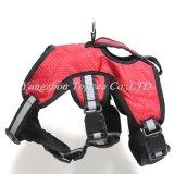 big dog harness