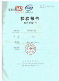 Motor Test Report